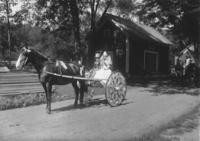 Girl and boy on a decorated carriage in Willimasville parade