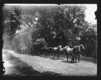 Boiler with eight horse team on road, Williamsville, Vt.