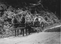 Horse and wagon with two men and a girl