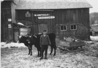 W.J. Metcalf Feed, Stable with boy and oxen team in front