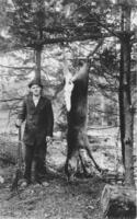 Ashton Timson with hanging deer, Williamsville, Vt.