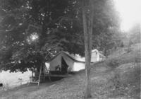 Mr. Nichol's Campsite with Four People and a Dog, in Halifax
