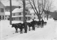 Young men with 6 oxen team and sled, Marlboro, Vt.