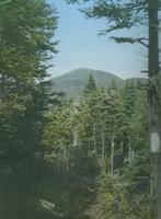 A view of Mount Abraham