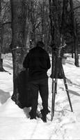 Surveying the sugar bush