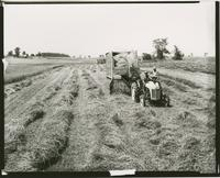 Farms - Haying