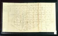 Williston plat map, undated
