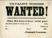 Cavalry horses wanted!